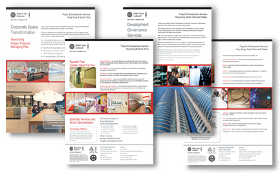 Project & Development Flyers