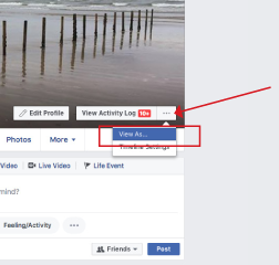 Facebook privacy - View as